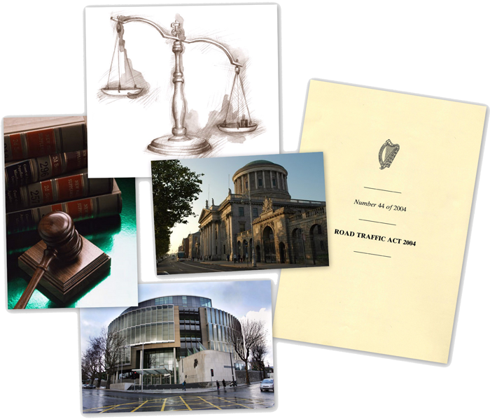 Expert Witness , Oral Hearing, Public Inquiry